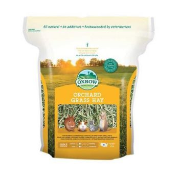 Oxbow Orchard Grass Hay for Small Animals, 15 oz