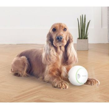 Dog Toys Automatic Rolling Treat  Ball
