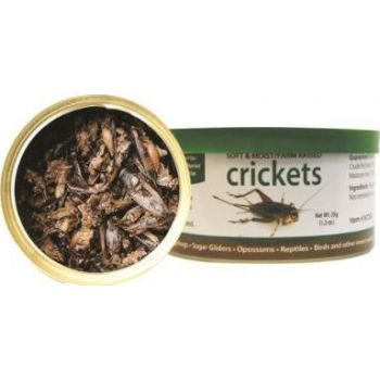 EXOTIC NUTRITION CRICKETS 35G