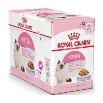 Royal Canin Cat Wet Food Jelly Kitten Instinctive box of 12x85g
