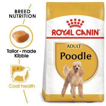 Breed Health Nutrition Poodle Adult 1.5 KG