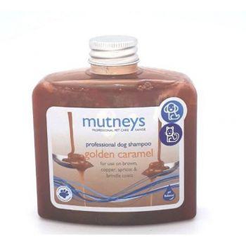 Golden Caramel Shampoo 250ml