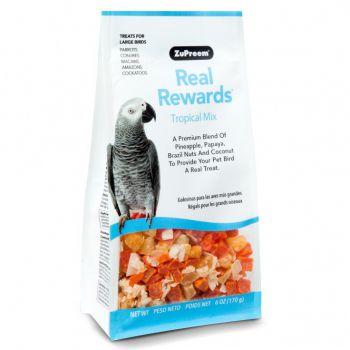 Real Reward Large Parrot Treats - Tropical Mix 170g