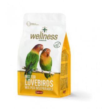 WELNESS LOVEBIRDS 850GM