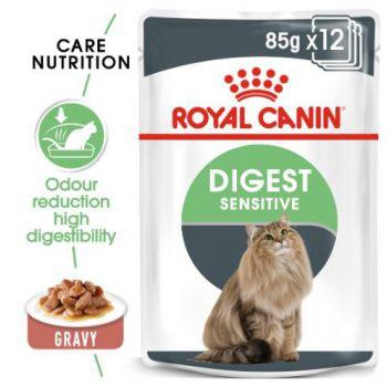 Royal Canin Cat WET FOOD - Digest Sensitive (pouches)85G
