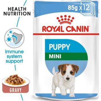 WET FOOD - SHN Mini Puppy 12x85g (pouches)