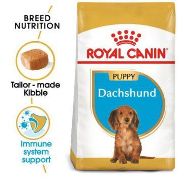 Royal Canin Dog Dry Food Dachshund JUNIOR 1.5 KG