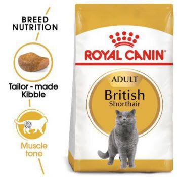 Royal Canin British Shorthair Cat Dry Food 4 KG