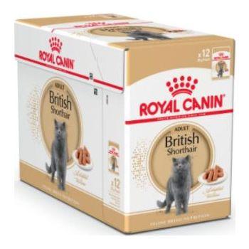 Royal Canin Cat WET FOOD - FELINE BREED NUTRITION BRITISH SHORTHAIR 12X85G