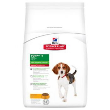 Hill's Science Plan Puppy Healthy Development Canine w/Chicken 1kg